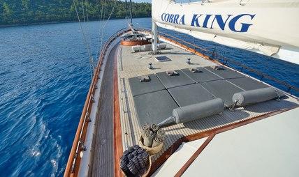Cobra King Charter Yacht - 3