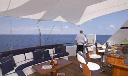 Teleost Charter Yacht - 4