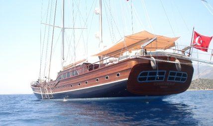 Carpe Diem IV Charter Yacht - 5
