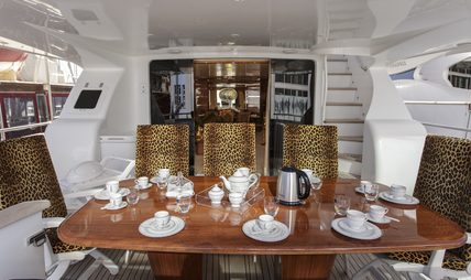 Sea Jaguar Charter Yacht - 4