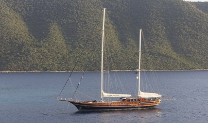Cobra King Charter Yacht - 5