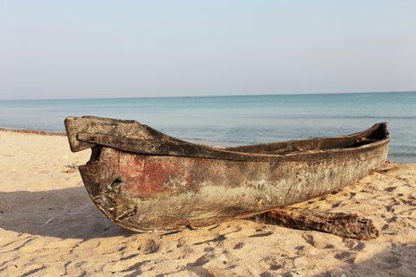 Socotra photo 24