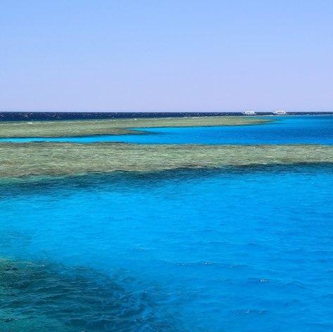 Egypt & Red Sea photo 21