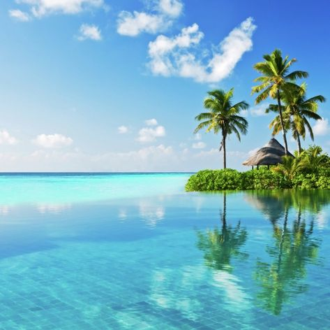 Enjoy the Islands of Possibility