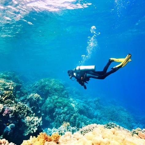 Maldives photo 33