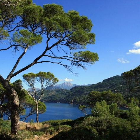 Mallorca photo 3