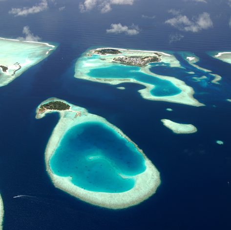Indian Ocean photo 14