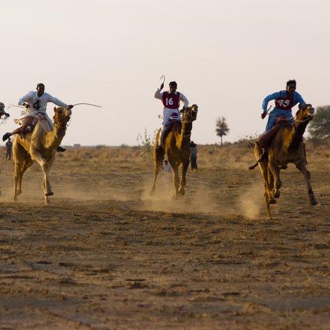 Arabian Gulf photo 9