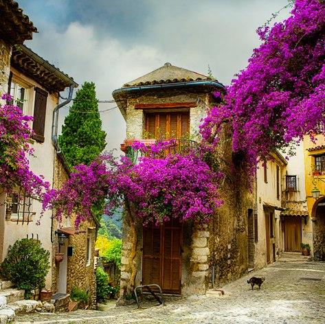 French Riviera photo 27