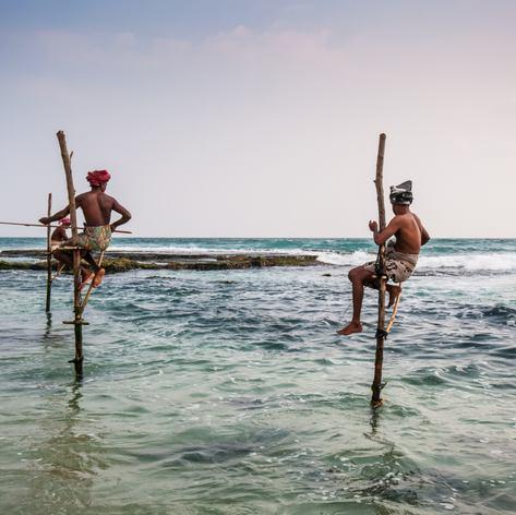 Sri Lanka photo 3