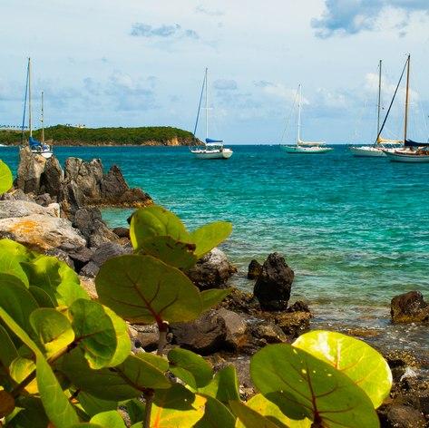 US Virgin Islands photo 15