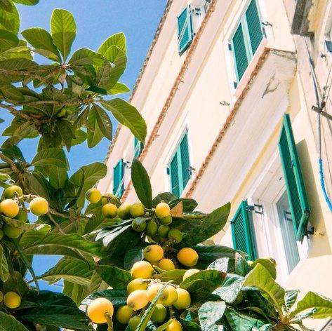 Corfu photo 27