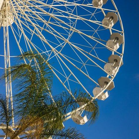 Make a trip to Marineland