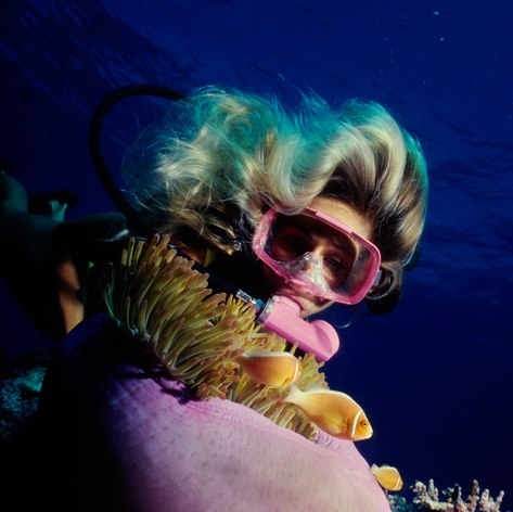 Great Barrier Reef photo 15