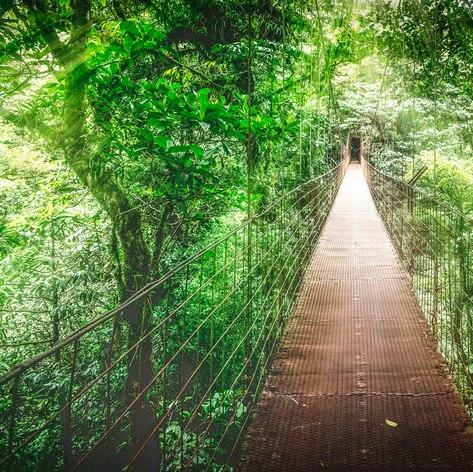 Costa Rica photo 15