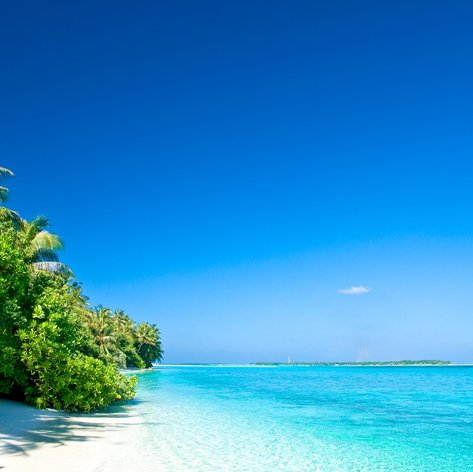 Discover the Beaches of the Maldives