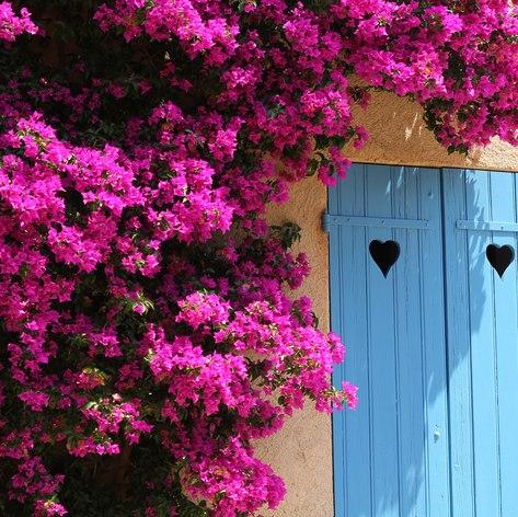 French Riviera photo 33