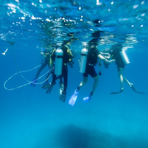 Four divers waiting for boat after diving