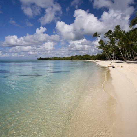 Clean topical beach