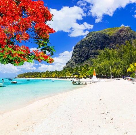 Indian Ocean photo 33
