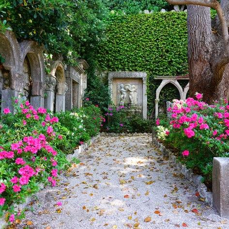 French Riviera photo 8