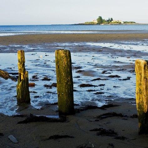 New England photo 44