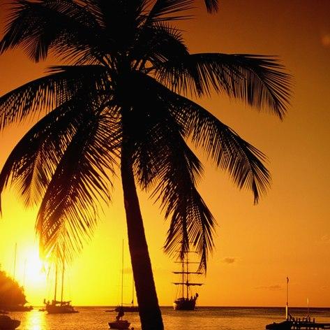 St Lucia photo 32