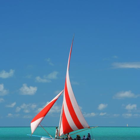 One from the sailboats participated in regatta