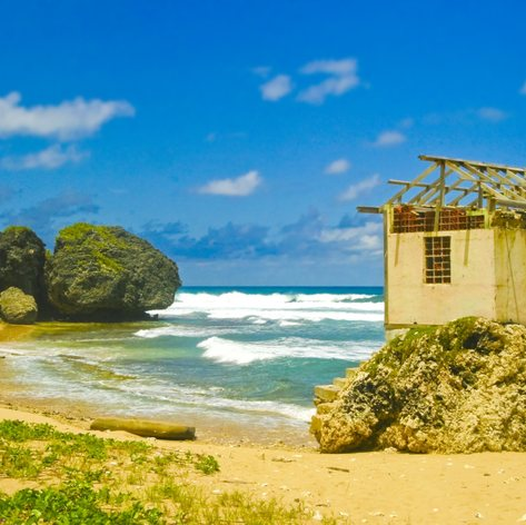 Barbados Beaches Offer Unrivalled Landscapes
