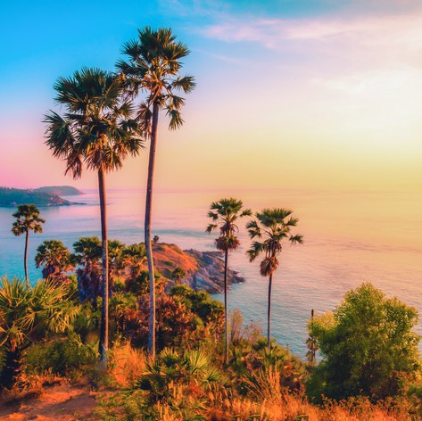 South East Asia photo 45