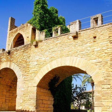 Mallorca photo 26