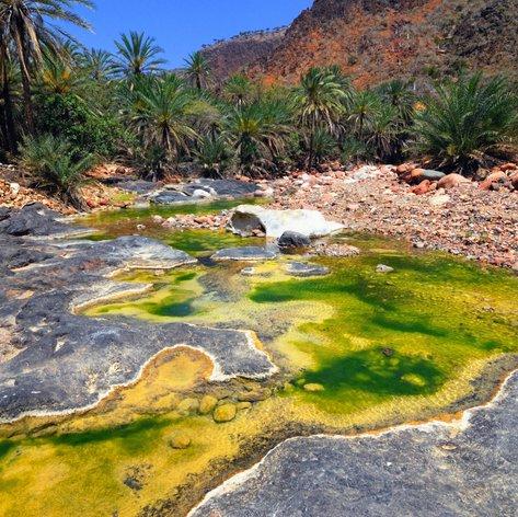 Socotra photo 15
