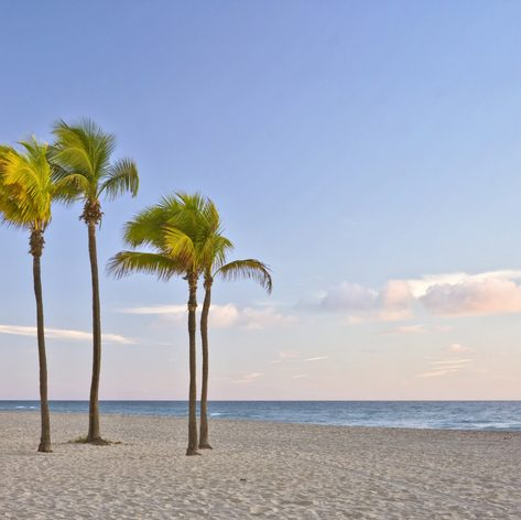 Enjoy a family friendly beach scene