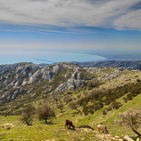 East Coast Italy photo 38