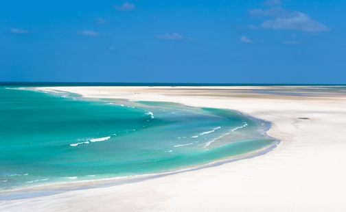 Socotra photo 12