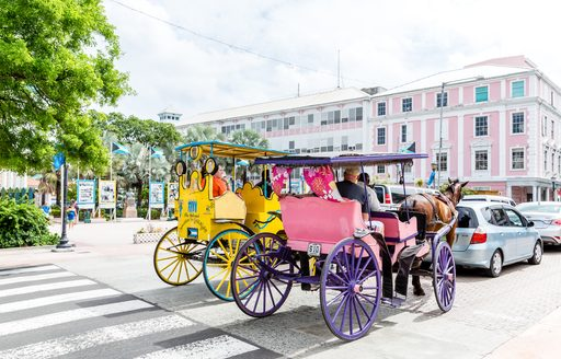 Horse and cart behind cars on road in Nassau, Bahamas