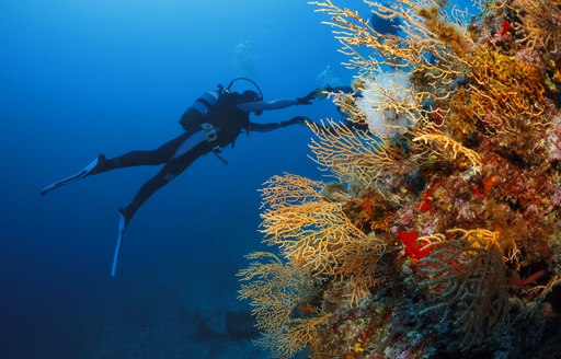 The Ultimate Guide To Wreck Diving In Greece photo 8