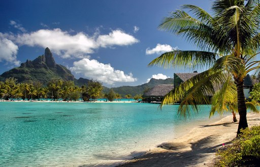 sandy beach with palm trees looked over by mountain in Bora Bora in French Polynesia