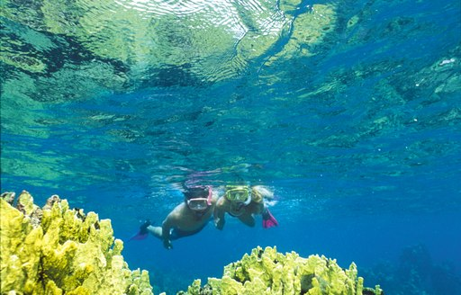 two people snorkel in the usvi