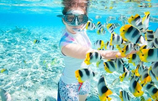 Snorkeller and fish in Tahiti