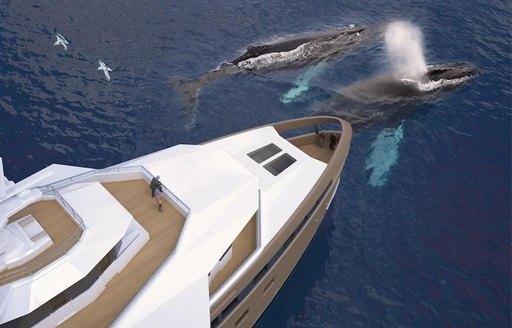 Damen launches expedition yacht 'La Datcha'  photo 2