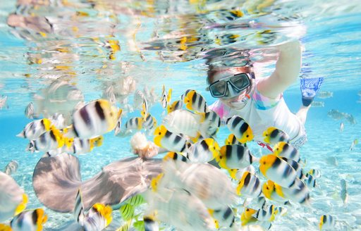 Below Deck season 6 filmed in Tahiti   photo 6