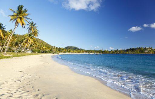 Bumper Caribbean yacht charter season predicted as Coronavirus travel restrictions relax photo 6