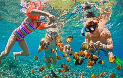 Family snorkels in the Caribbean ocean