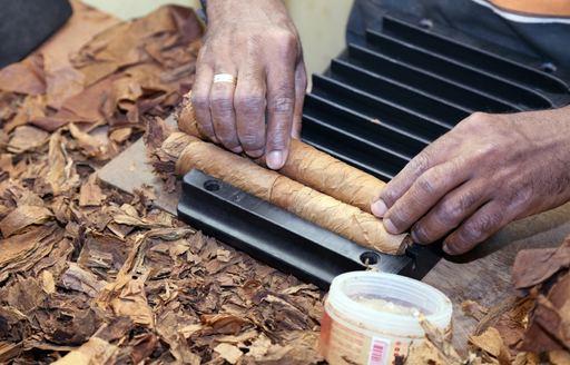 Preparing Cuban Cigars