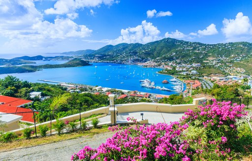 Panoramic view over St Thomas' on US Virgin Islands showing colorful plants in the foreground and harbour surrounded by hilly terrain in the back