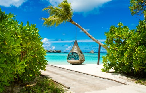 Peering through foliage with a hanging egg seat in a tree, overlooking white sands and azure waters in background.