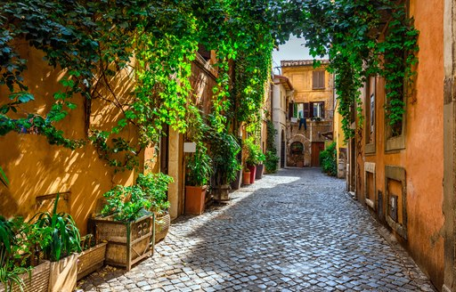 Street in St Tropez in the Mediterranean, with ivy lining the houses