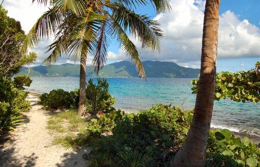 untouched beach on Jost Van Dyke in the British Virgin Islands
