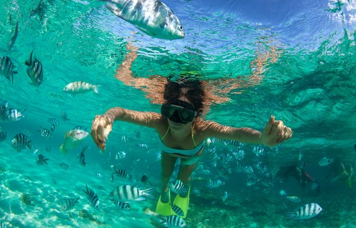 Woman snorkels in clear water in the Bahamas